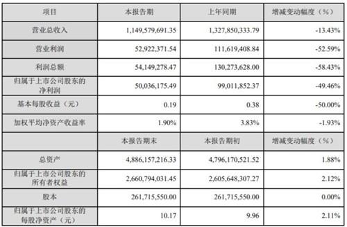 如意集团不如意 2019年净利润下滑49.46%
