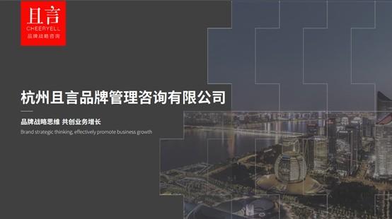 杭州品牌管理咨询公司:从思维到落地,且言做好品牌战略每一课